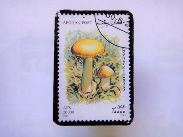 アフガニスタン 切手ブローチ1407