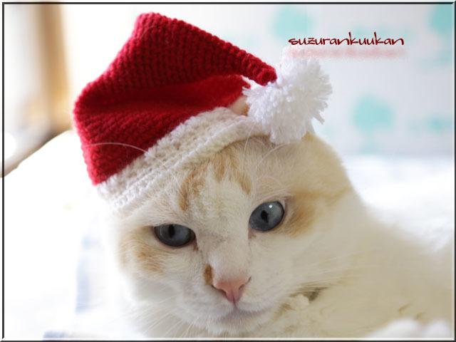 ★受注制作★【犬猫用】サンタハット