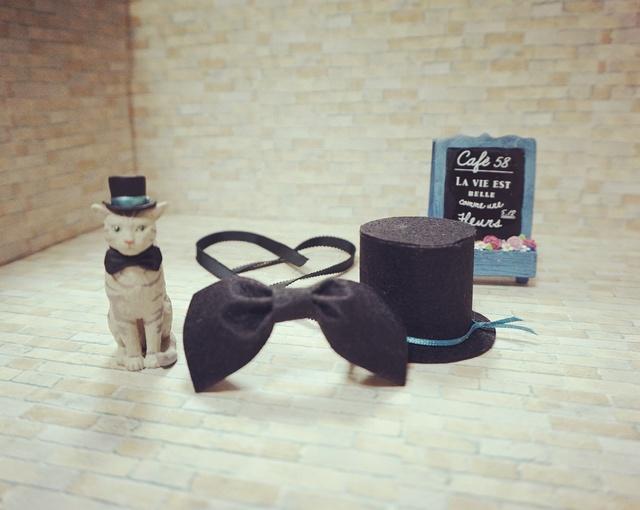 犬・猫の首輪(ステキンヌチョーカー)送料無料