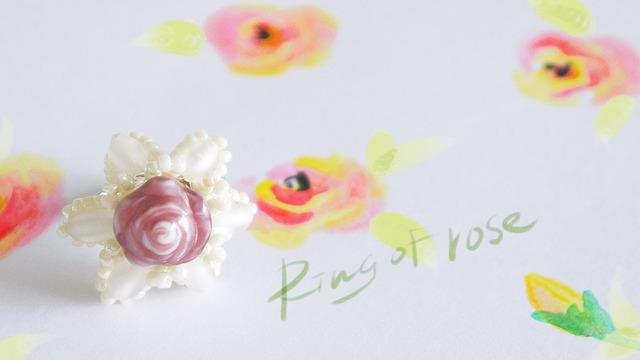 Rose of ring �Х�Υ���ʺ��Ρ�