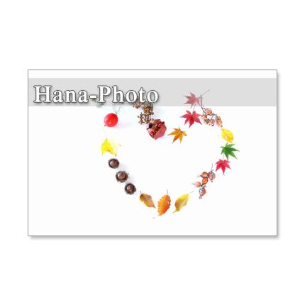 1191) ざくろ、姫柿、秋の葉たち          ポストカード5枚組