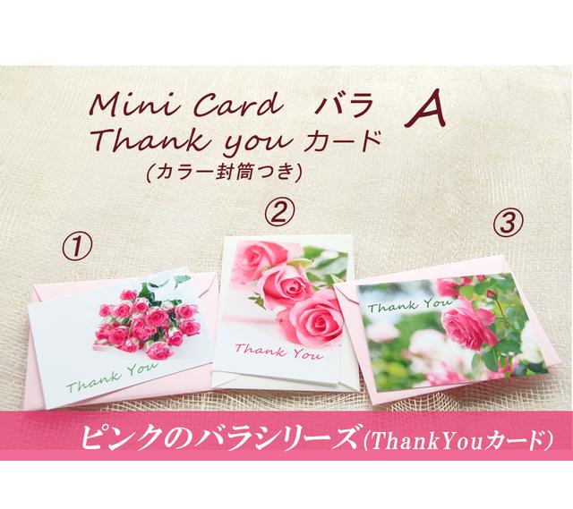 バラA ThankYouカード(ミニカード)カラー封筒付き   3組セット