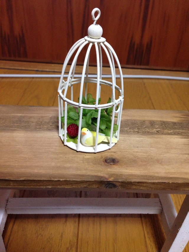 petit birdcage?