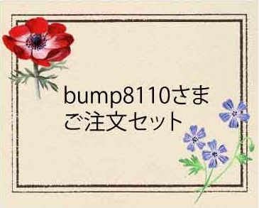bump8110さまご注文セット