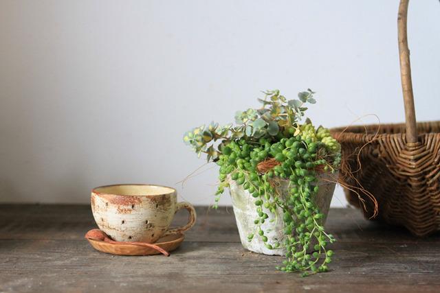 ホワイトモスポット多肉植物寄せ植え(グリーンネックレス)