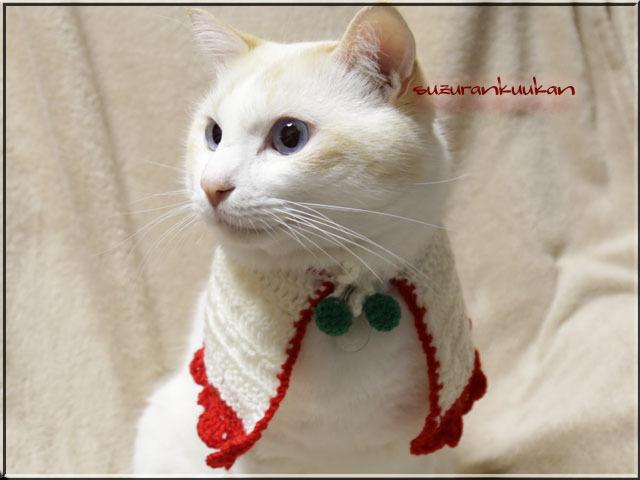 【猫犬用】ケープ首周り25cm 016ハッピーカラー<白×赤>