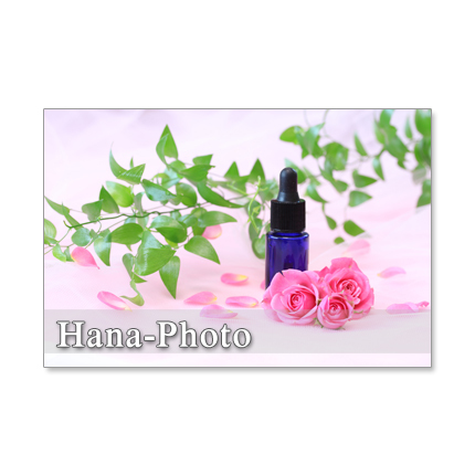 1194) ピンクのバラシリーズ  ポストカード5枚組  1