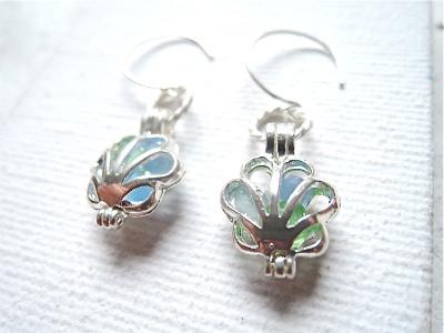 Sea glass in shell earrings   Silver 925