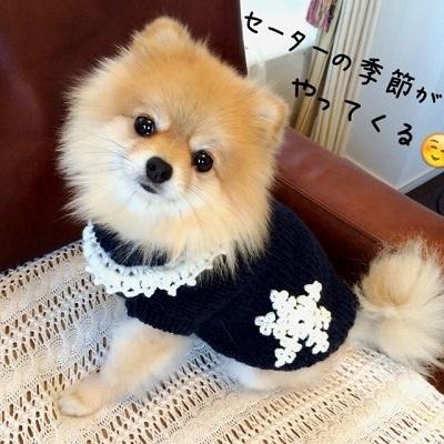 雪の結晶柄セーター