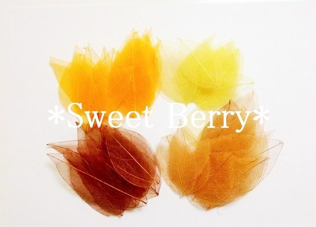 【秋色カラー】 スケルトンリーフ 65枚