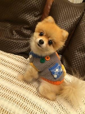 3ポケットセーター