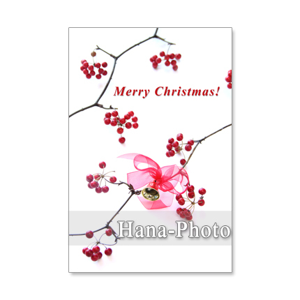 1208�˥��ꥹ�ޥ���7��Merry Christmas!...