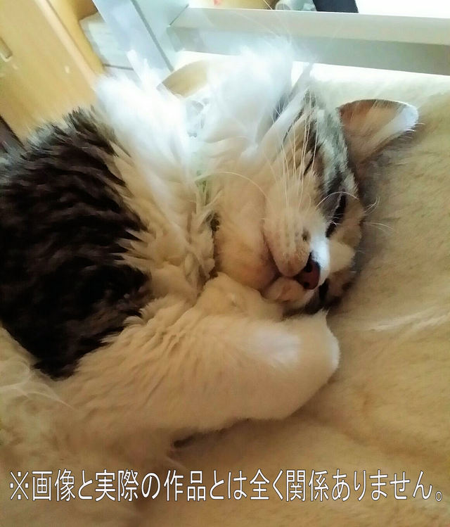 愛猫集パート4 『kurosama様 予約品』