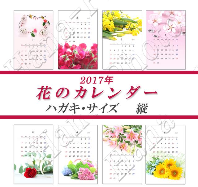 花のカレンダー 1  はがきサイズ・縦  2017年