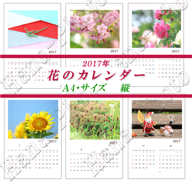 花のカレンダー 3  A4サイズ・縦   2017年