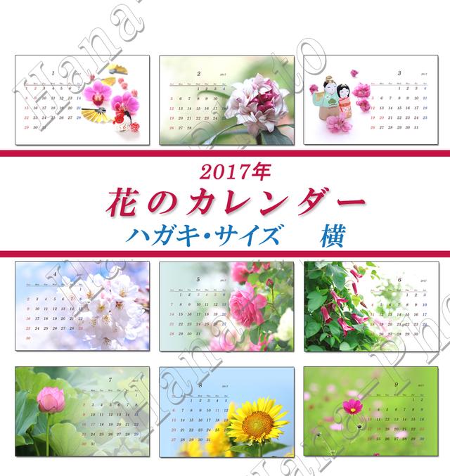 花のカレンダー 2  はがきサイズ・横  2017年