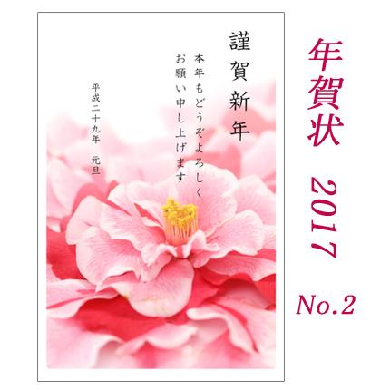 2017年賀状-2 ドレスのような椿の花  同デザイン11枚セット