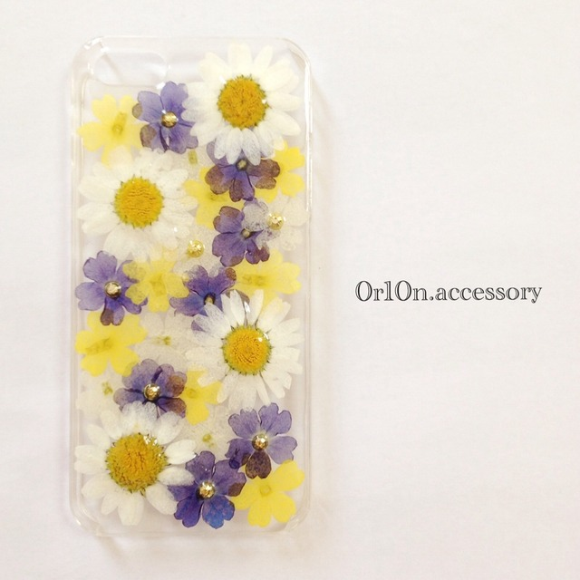 iphone5/5sケース【no/10】