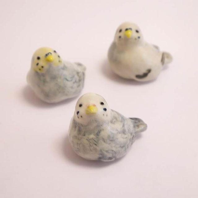 見上げるセキセインコ(陶器の小鳥の置物)