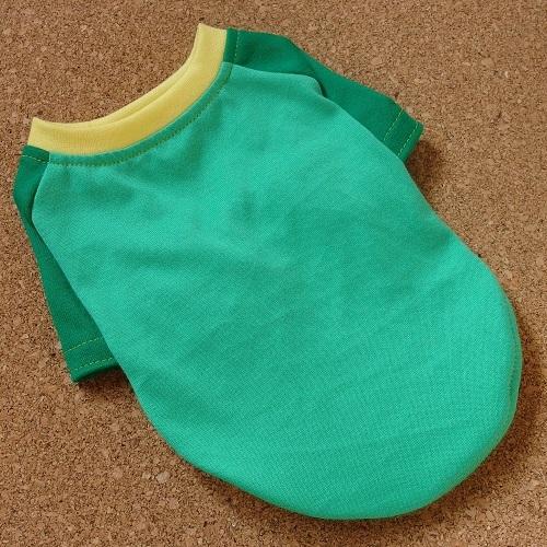 【S】グリーン系 綿のラグランTシャツ2