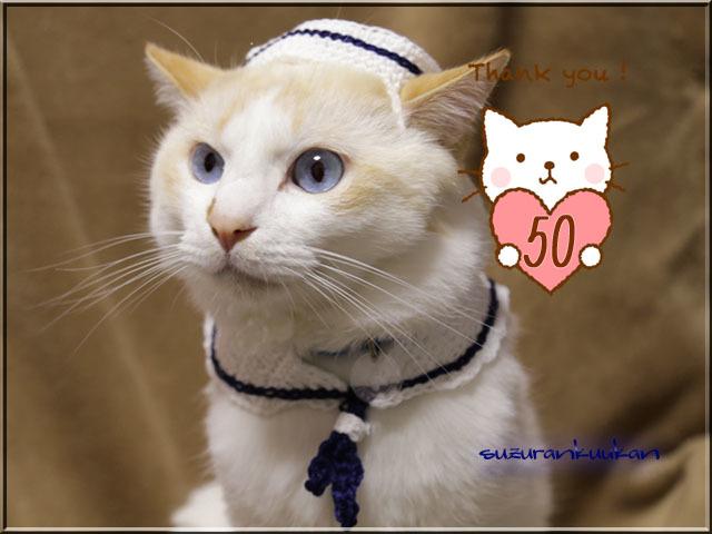 【猫犬用】マリンセット024<白襟>