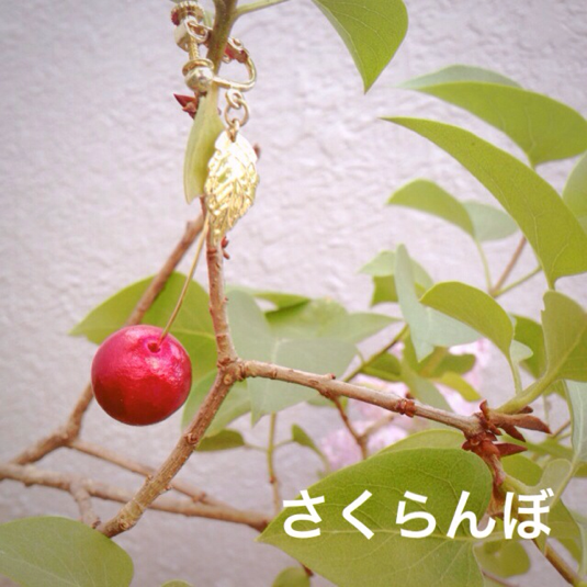 さくらんぼイヤリング/ピアス