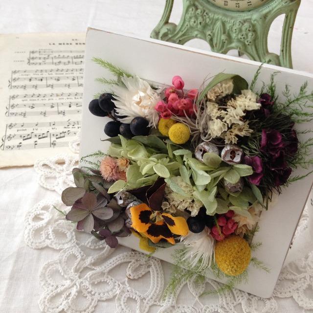 フレームの中の花図鑑