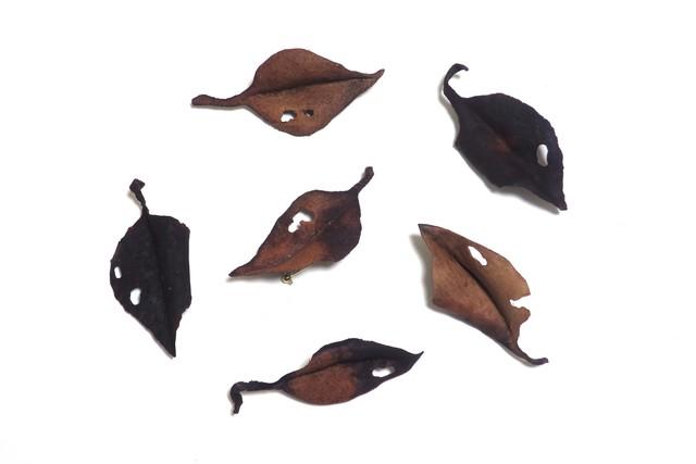 レザーブローチ【fallen leaves】type.12
