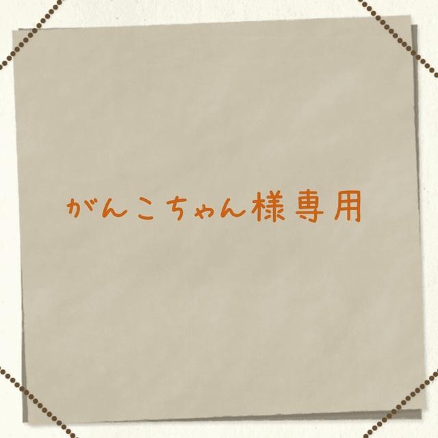 がんこちゃん様専用☆フープ金具◇クリ...