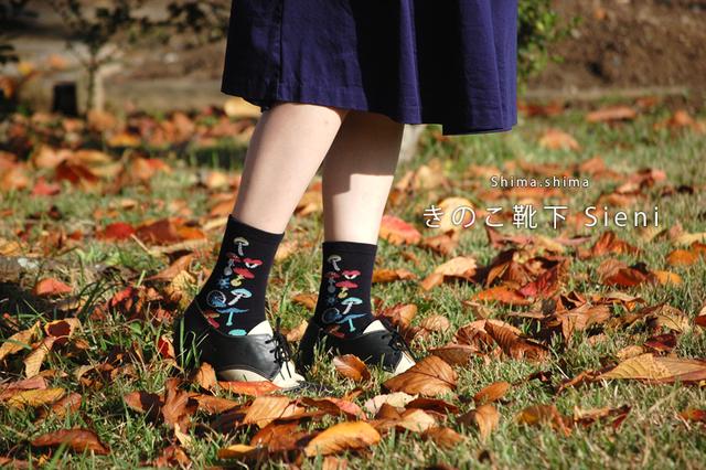 きのこくつしたSieni 【靴下Mサイズ:2...