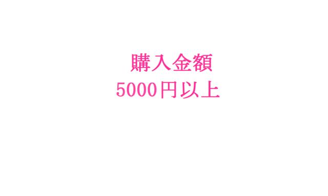 【オプション】ご購入金額5000円〜