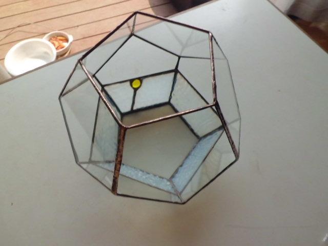 5角テラリュウム