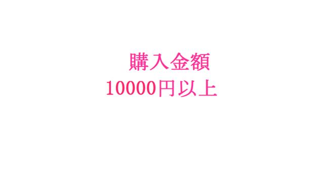 【オプション】ご購入金額10000円〜