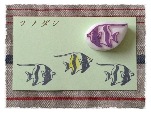 消しゴムはんこ  海水魚シリーズ*ツノダシ