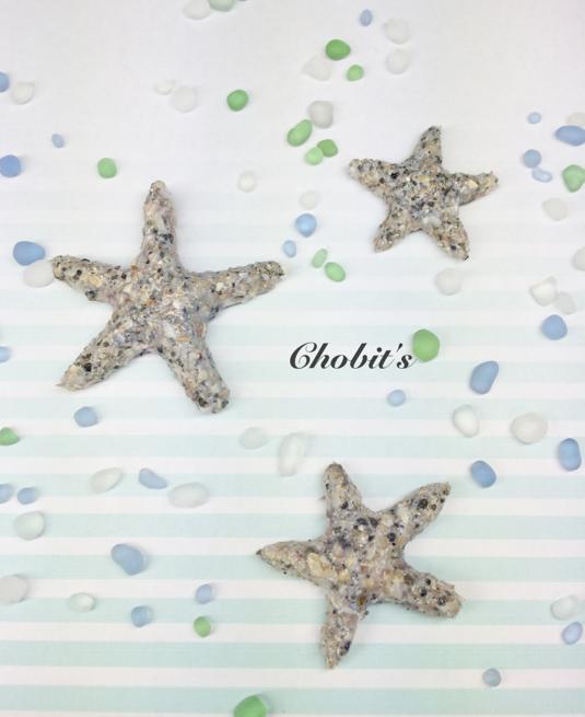Sea ??Sand Starfish『海砂のヒトデ』