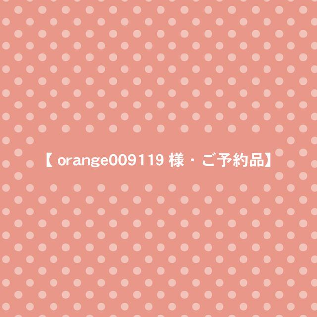 【 orange009119 様・ご予約品】