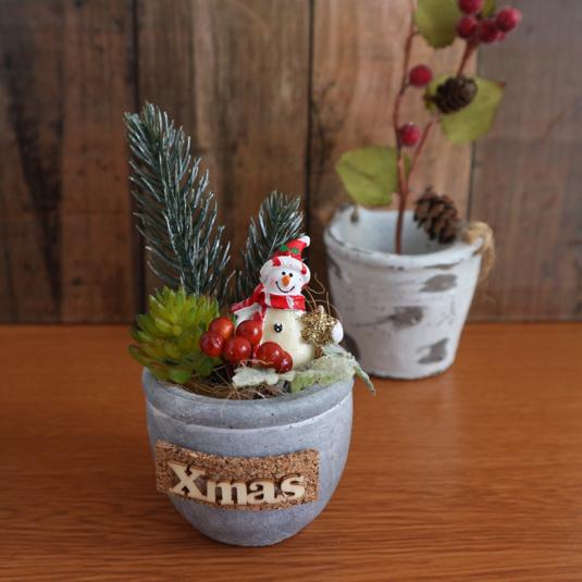 多肉ちゃんのクリスマス(スノーマン)