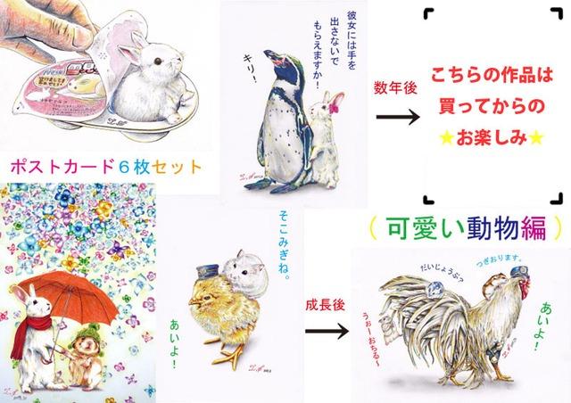 第1弾 ポストカード6枚セット (可愛い動物編)