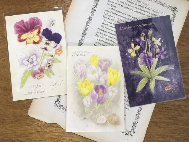 植物図鑑のポストカード 3種類セット