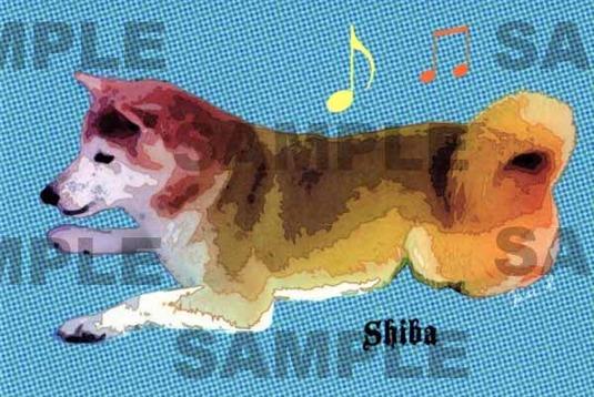 柴犬イラストポストカード 同柄2枚組