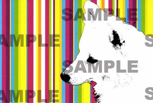 ストライプ柄わんちゃんのイラストポストカード 同柄2枚組