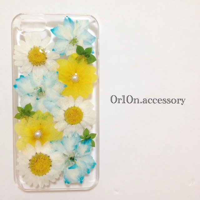 iphone5/5sケース【no/15】