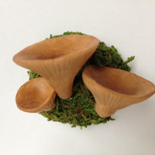粘土のきのこ きの苔マグネットカヤタケ