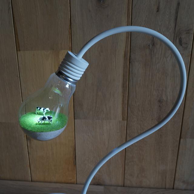 bulb terrarium white