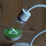 naokook様オーダー分 bulb terrarium mini white