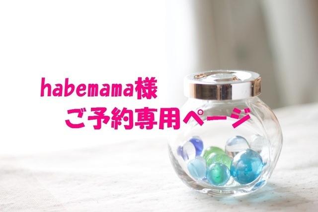 habemama様ご予約専用ページ