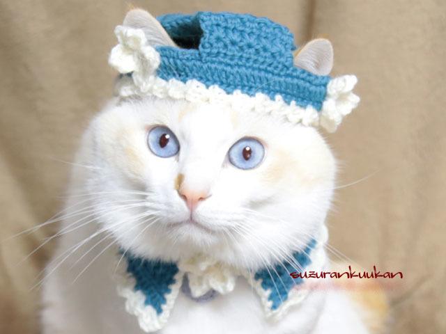【猫用】帽子とケープ クリスマスロー...