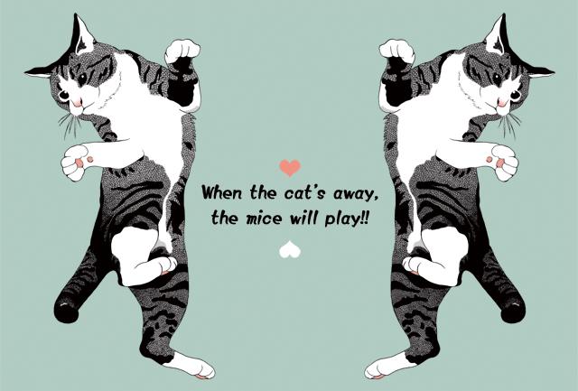 猫のイラスト・ポストカード2種セット?