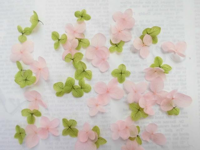 ?紫陽花の花びら1.5??40枚?パステルカラ...