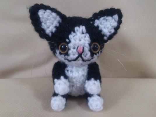 黒 × 白 ネコちゃん